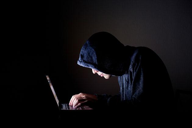 Computer fraudster
