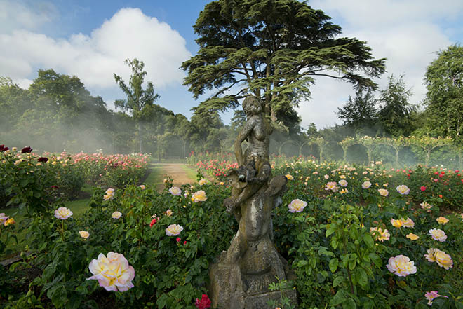 Blenheim Palace Rose Garden