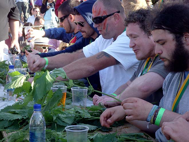 Cotswolds Stinging Nettle Eating Competition