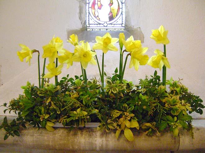 Daffodils in Church